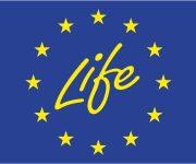 EU vil sende millioner til Susåen – men først dialog og borgermøde